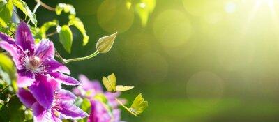 Fototapeta sztuka wiosna czy lato tło kwiat; Wielkanoc krajobrazu