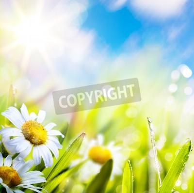 Fototapeta Sztuki abstrakcyjna tła wiosny latem kwiat w trawy z kroplami wody na niebie słońca