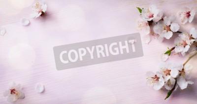 Fototapeta sztuki wiosną kwitnące; wiosenne kwiaty na drewnianym tle