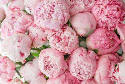 Fototapeta Tapeta. Piękne kwiaty różowe piwonie. Kompozycje kwiatowe, światło dzienne.