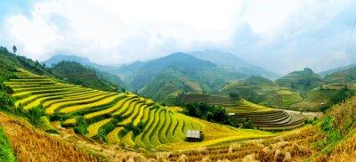 Fototapeta Tarasy ryżu w Wietnamie