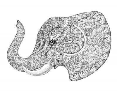 Fototapeta Tattoo profile elephant with patterns and ornaments