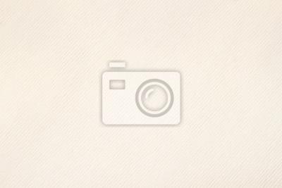 Fototapeta Tekstury rocznika papieru dla grafiki. Z miejscem na tekst, w tle