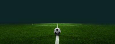 Fototapeta textured soccer game field - center, midfield