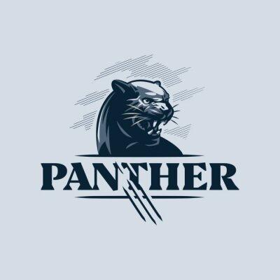 Fototapeta The black, aggressive panther bared its teeth.