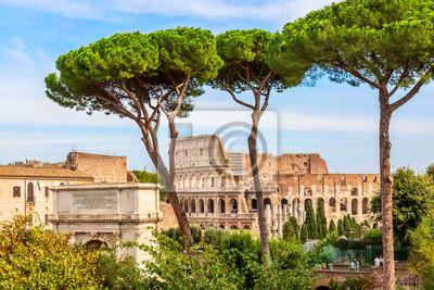 Fototapeta The Colosseum in Rome, Italy during summer sunny day. The world famous colosseum landmark in Rome.