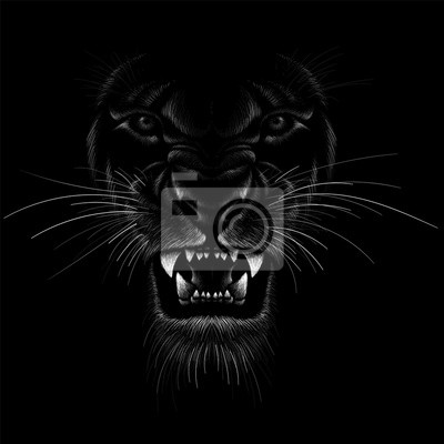 Fototapeta The Vector logo lion for tattoo or T-shirt  print design or outwear.  Hunting style lions background.