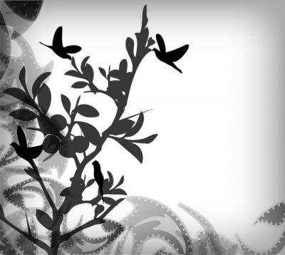 Fototapeta Thorns z ptakami