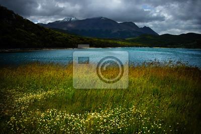 Tierra del Fuego, Patagonia, Argentyna