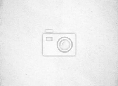 Fototapeta Tło białe tekstury