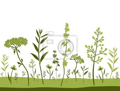 Tło pola