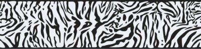 Fototapeta Tło z White Tiger skóry