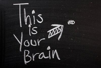Fototapeta To jest Twój mózg zabawny żart lub komentarz