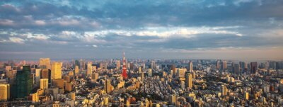 Fototapeta Tokyo aerial panoramiczny widok