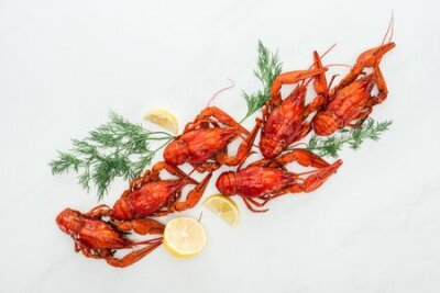 Fototapeta top view of red lobsters, lemon slices and green herbs on white background
