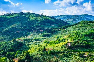 Fototapeta Toskania Green Hills Panoramiczne krajobrazu, Toskania, Włochy.