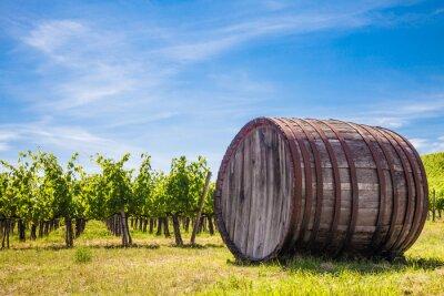 Fototapeta Toskania wineyard