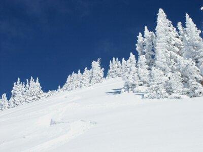 Fototapeta Trasa narciarska w górach Wasatch
