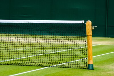 Fototapeta Trawnik kort tenisowy
