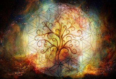 Fototapeta tree of life symbol and flower of life and space background, yggdrasil.