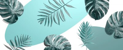 Fototapeta Tropical palm leaves from above