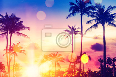 Fototapeta Tropical palm tree with colorful bokeh sun light on sunset sky cloud abstract background.