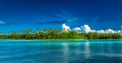 Fototapeta Tropical Rarotonga z palmami i piaszczystej plaży, Wyspy Cooka
