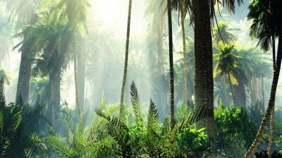 Fototapeta Tropikalna dżungla we mgle. Palmy rano.