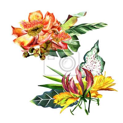 Tropikalna Hawajów pozostawia Palma drzewa w stylu akwarela izolowane.