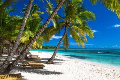 Fototapeta Tropikalna plaża na Morzu Karaibskim, wyspa Saona, Dominikana