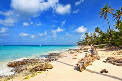 Fototapeta Tropikalna plaża w Dominikanie.