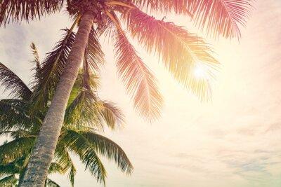 Fototapeta Tropikalna plaża z palmami i słoneczne niebo