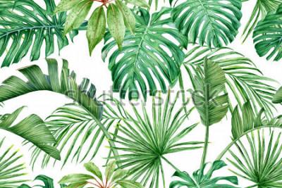Fototapeta Tropikalne liście. Monstera, strelitzia, palmy. Akwarela bezszwowe wzór.