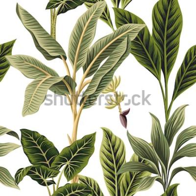 Fototapeta Tropikalne rocznika palmy, banan i palmy pozostawia kwiatowy wzór białe tło. Tapeta egzotycznej dżungli.