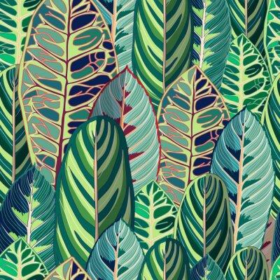Fototapeta Tropikalnej dżungli liścia Wektorowa Bezszwowa ilustracja