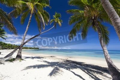 Fototapeta Tropikalny raj na Fidżi Islandii
