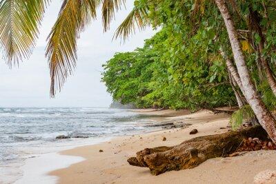 Fototapeta Tropikalny raj plaży Costa Rica