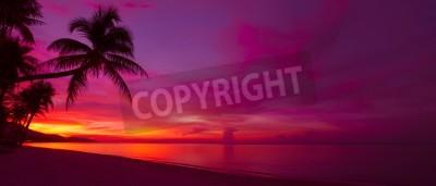 Fototapeta Tropikalny zachód słońca z panorama sylweta palmy