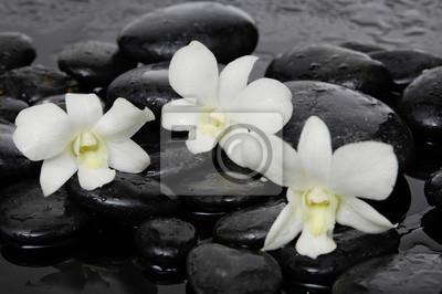 Trzy białe orchidea z kamieni terapii