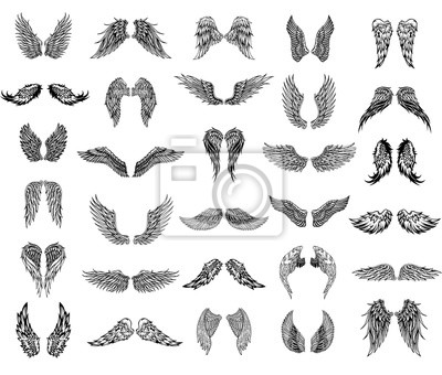 Fototapeta Trzydzieści skrzydeł, ilustracja graficzna