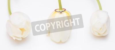 Fototapeta tulipan i pierścionek zaręczynowy złoto na białym tle