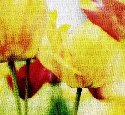 Fototapeta tulpen motiv leinwandstruktur