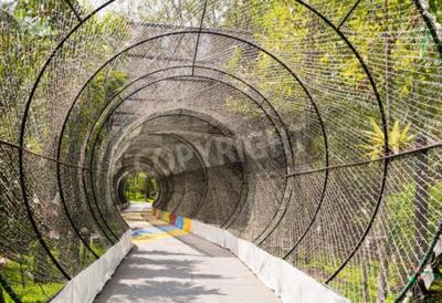 Fototapeta tunnel light and nature background