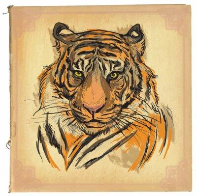Fototapeta Tygrys - kolorowych linii sztuki