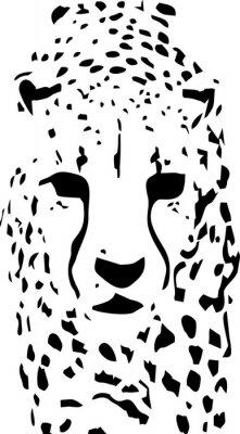 Fototapeta Tygrys pop-artu w czerni i bieli