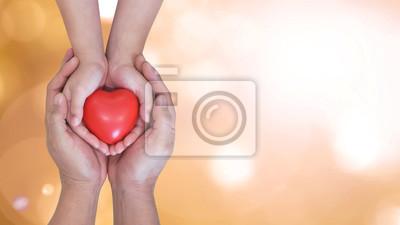 Fototapeta Ubezpieczenie na życie, dawstwo narządów od dawcy, dawanie życia na cele charytatywne, adopcja rodzinna, opieka nad dzieckiem i opieka zdrowotna dla koncepcji ochrony rodziny z ojcem rodzicem i dziećm