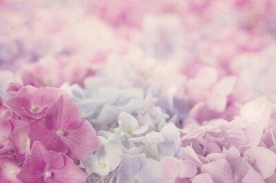 Fototapeta ukojenie dla duszy i ciała tkwi w różowych kwiatach na pościeli