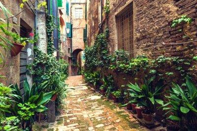 Fototapeta Ukryte ulic starożytnego miasta Siena, Włochy