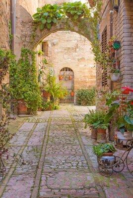 Fototapeta Ulica z kamienia łuk ozdobiony roślinami (Spello)