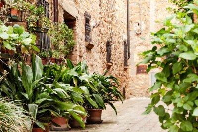 Fototapeta Ulice starego włoskiego miasta Pienza